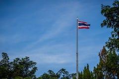 Le drapeau thaïlandais national s'agite sur le poteau avec le branc vert d'arbre photographie stock libre de droits