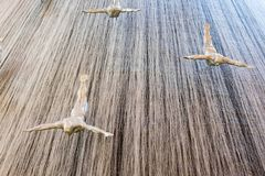 LE DUBAÏ, EAU - 22 JANVIER : Cascade dans le mail de Dubaï - photos libres de droits
