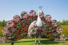 LE DUBAÏ, EAU - 20 JANVIER : Jardin de miracle à Dubaï, le 20 janvier, Photos stock
