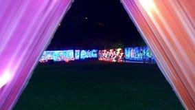 LE DUBAÏ, EMIRATS ARABES UNIS, EAU - 20 NOVEMBRE 2017 : Parc de lueur de jardin de Dubaï illuminé la nuit banque de vidéos