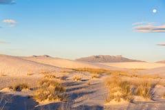 Le dune di sabbia a bianco insabbia il monumento nazionale [New Mexico, U.S.A.] fotografia stock