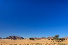 Le dune di sabbia namibiane rosse del deserto aumentano nella fila sulla costa atlantica Fotografia Stock Libera da Diritti