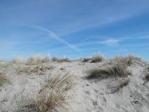 Le dune olandesi su si chiudono fotografie stock libere da diritti