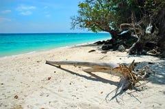 Île en bambou Image libre de droits