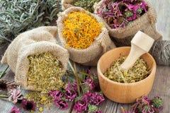 Le erbe curative in tela di iuta insacca, mortaio di legno con la camomilla Immagine Stock