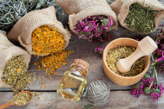 Le erbe curative in tela di iuta insacca, mortaio di legno con la camomilla Fotografia Stock