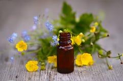 Le erbe e l'aromaterapia lubrifica dentro in bottiglia di vetro Immagine Stock