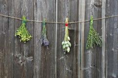 Le erbe mediche fiorisce il mazzo sulla vecchia parete di legno Immagini Stock