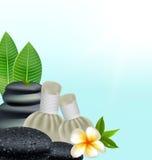 Le erbe tailandesi massaggiano la stazione termale con lo sfondo naturale delle erbe della compressa Fotografia Stock Libera da Diritti