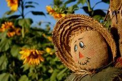 le för scarecrow Royaltyfri Foto
