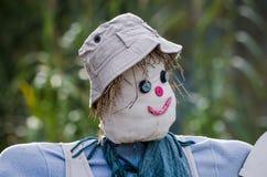 le för scarecrow arkivfoto