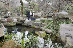 Le famiglie visitano il giardino dello stagno in tempio di wuhouci, adobe rgb fotografie stock
