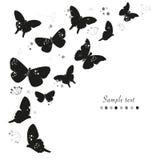 Le farfalle nere progettano e sottraggono il fondo decorativo di vettore della cartolina d'auguri dei fiori Fotografie Stock