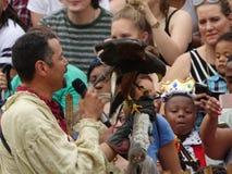 Le fauconnier médiéval 4 du festival 2016 Image libre de droits