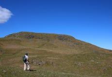 Le fellwalker masculin sur des pentes de Hallin est tomb?, Cumbria photos libres de droits