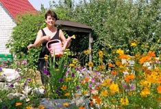 Le femme arrose des fleurs sur la résidence d'été photos libres de droits