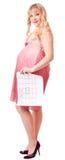 Le femme retient un calendrier de naissance Photographie stock