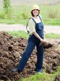 Le fermier répand l'engrais Image libre de droits