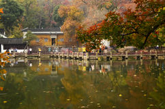 Le festival d'érable rouge de Tianpinghill à Suzhou, Chine Photographie stock