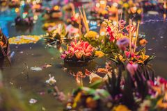 Le festival de Loy Krathong, les gens achètent les fleurs et la bougie pour s'allumer et flotter sur l'eau pour célébrer le festi photographie stock