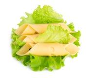 Le fette del formaggio su insalata verde lascia il fondo Immagini Stock