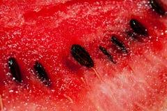 Le fette di anguria succosa hanno sparato il primo piano su un fondo scuro Immagine Stock