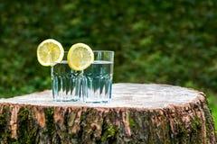 Le fette di limone sui due bicchieri d'acqua Fotografia Stock