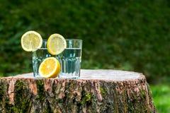 Le fette di limone sui due bicchieri d'acqua Immagini Stock