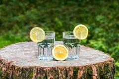 Le fette di limone sui due bicchieri d'acqua Fotografie Stock Libere da Diritti