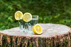 Le fette di limone sui due bicchieri d'acqua Immagini Stock Libere da Diritti