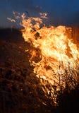 Le feu. Photographie stock