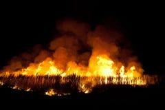 Le feu ! Photographie stock libre de droits