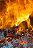 Le feu avec le bois de chauffage Images stock