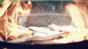Le feu brûle le bois de chauffage dans un barbecue rond, dehors au cours de la journée banque de vidéos
