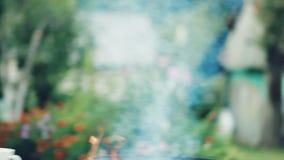 Le feu brûle le bois de chauffage dans un barbecue rond, dehors au cours de la journée clips vidéos