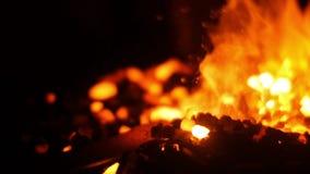 Le feu brûlant et charbons chauds dans un forgeron Forge banque de vidéos