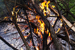 Le feu brûlant sur la nature images stock