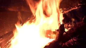 Le feu chaud avec du bois banque de vidéos