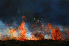 Le feu 3 d'ajonc de colline de Mulfra Photographie stock libre de droits