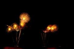 Le feu d'artifice, exposition, célèbrent, roi, anniversaire Images libres de droits