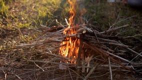 Le feu d'un feu sur la nature pendant le premier ressort banque de vidéos