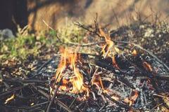 Le feu dans le jardin photos stock
