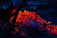 Le feu dans la forêt Images libres de droits