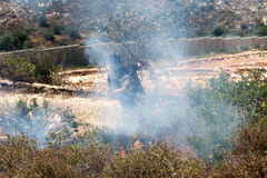Le feu dans un domaine palestinien par le mur de la séparation Photo libre de droits