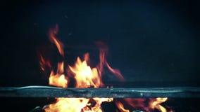 Le feu de barbecue banque de vidéos