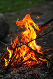 Le feu de camp Photo stock