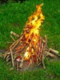 Le feu de camp Photo libre de droits