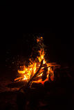 Le feu de camp en nature photo stock
