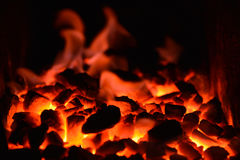 Le feu de charbon Photo libre de droits