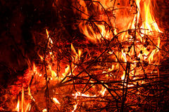 Le feu de flambage d'un rouge ardent sur le fond noir photographie stock